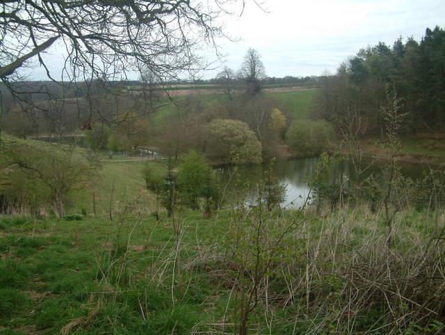 Lakes at Bretby Hall - geograph.org.uk - 398996