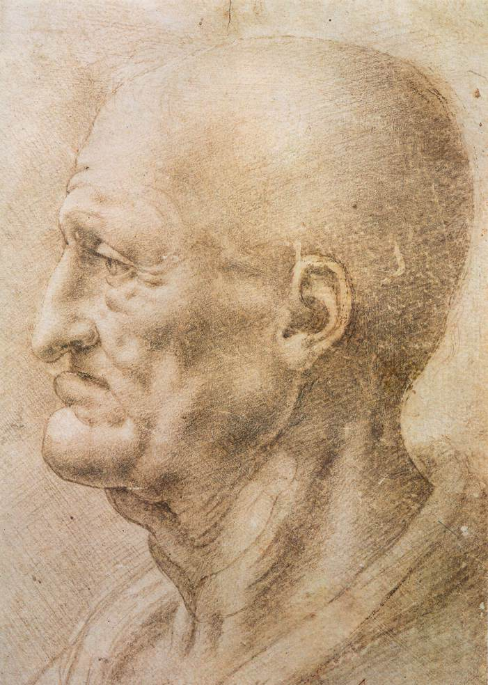 Da Vinci profile of an old man