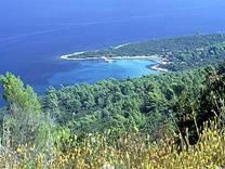 L'isola di Lesina.