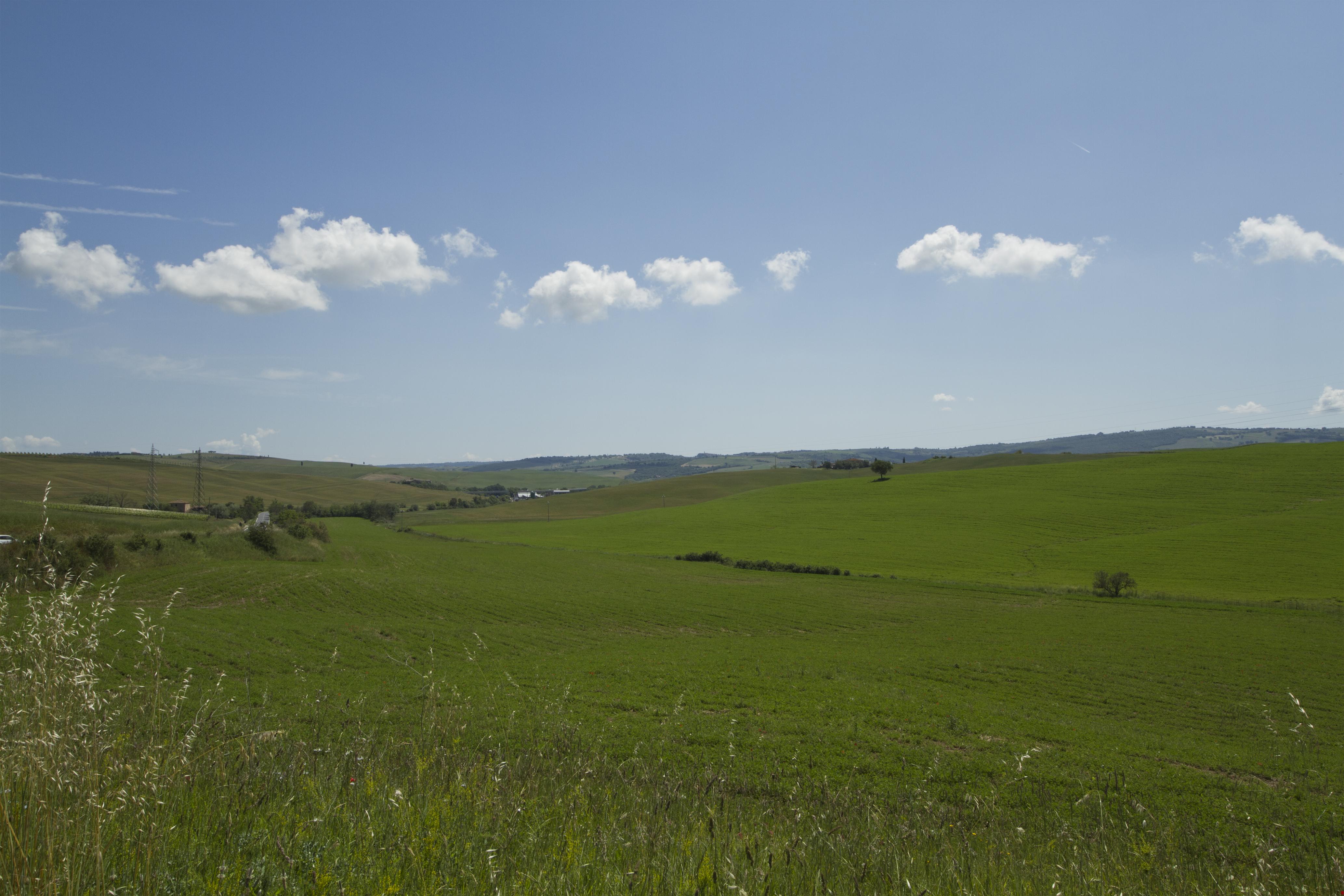 Montalcino countryside - panoramio.jpg