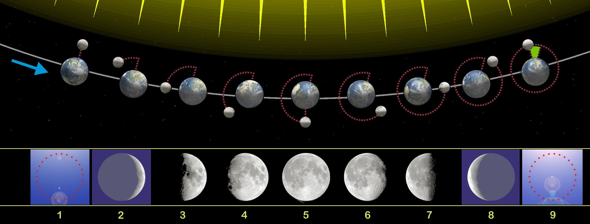 Moon phases 00.jpg