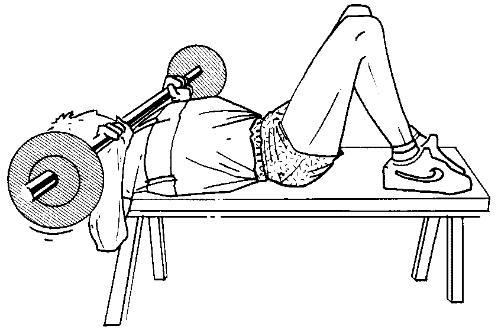 d velopper coucher avec alt res musculation forum. Black Bedroom Furniture Sets. Home Design Ideas