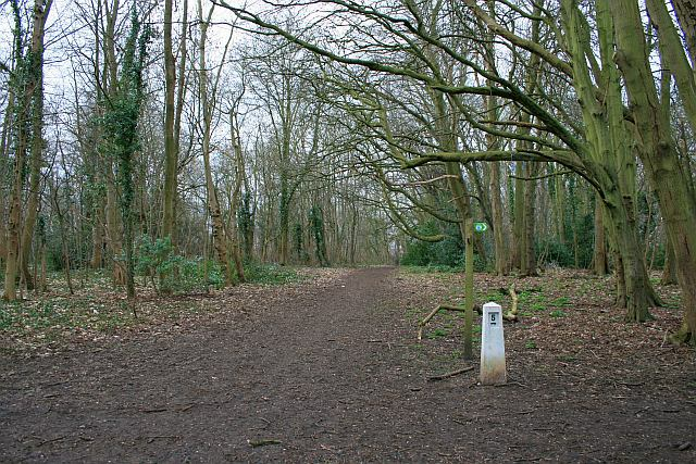Nonsuch Park, near the Banqueting House - geograph.org.uk - 1174174