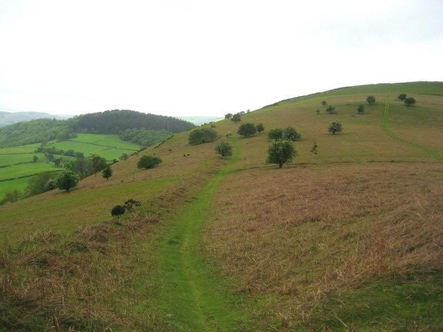 Offa's Dyke Trail below Herrock Hill - geograph.org.uk - 450168