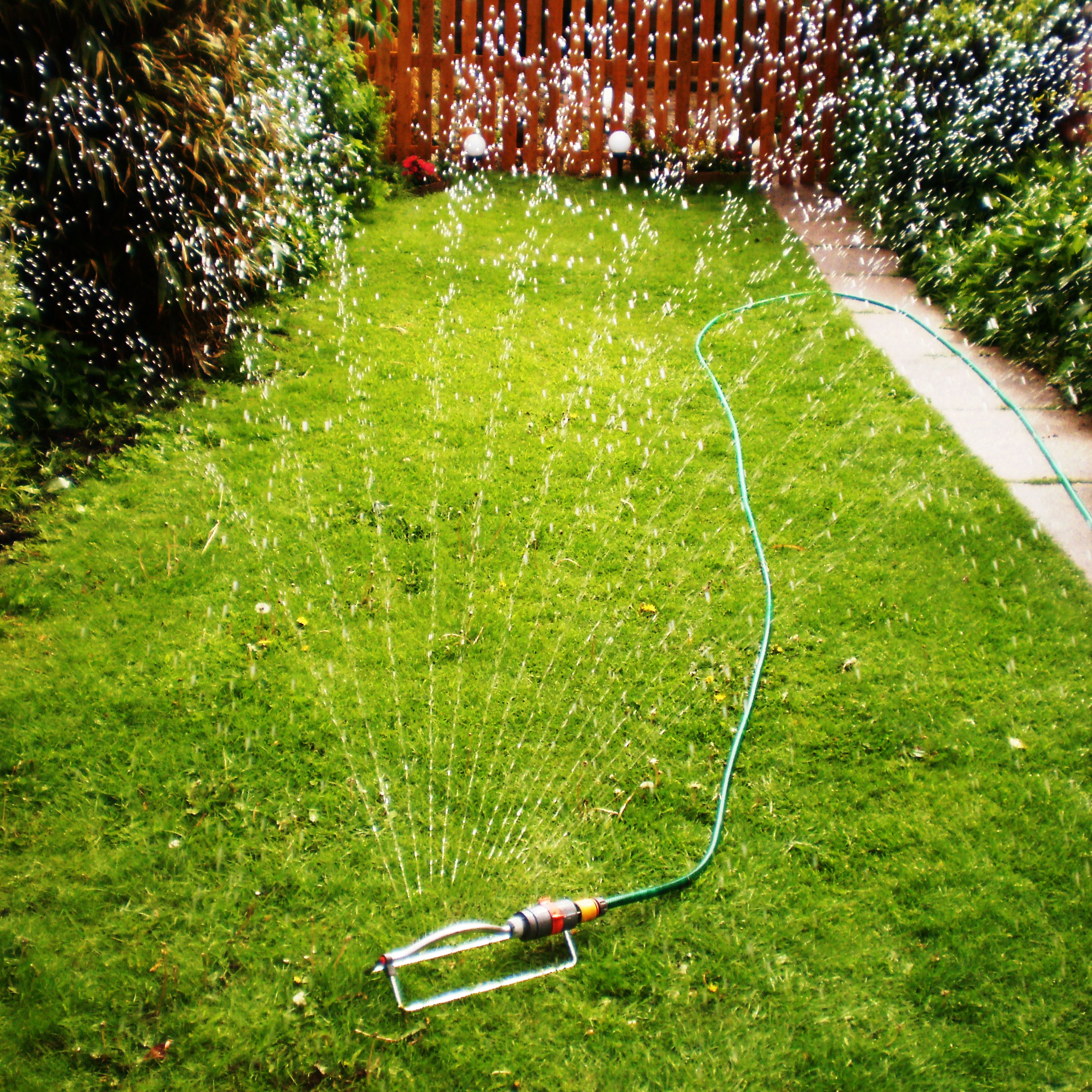 Best Lawn Sprinkler Oscillating Rotary Stationary Or