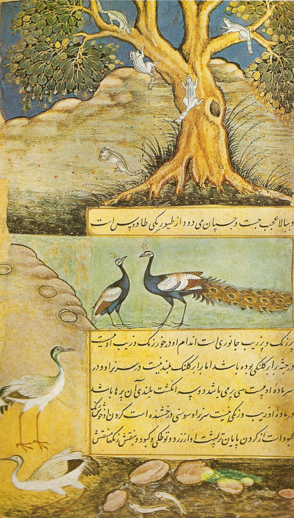mughal landcape Mughal painting evolved from the persian school of miniature painting with influences of hindu, buddhist and jain concepts.