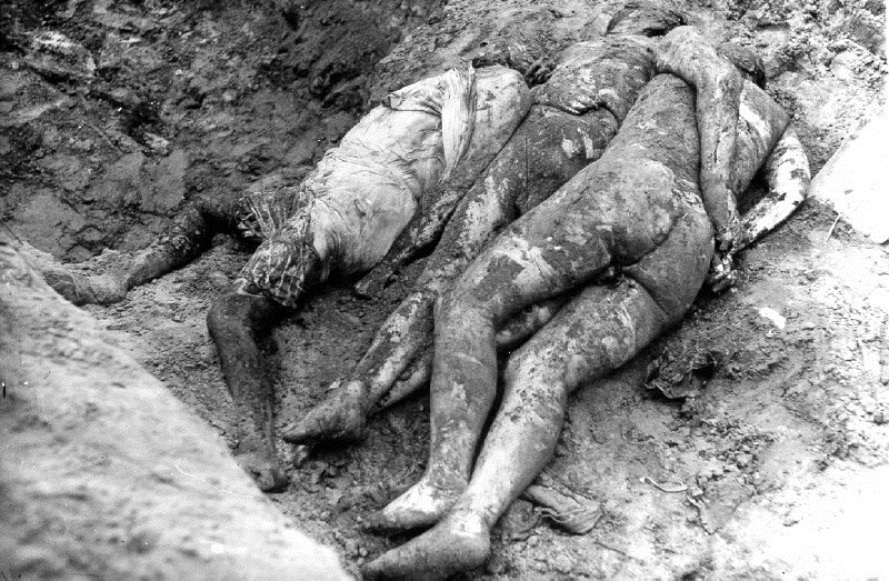 Very pictures of black victims of holocaust porn moviegalleries