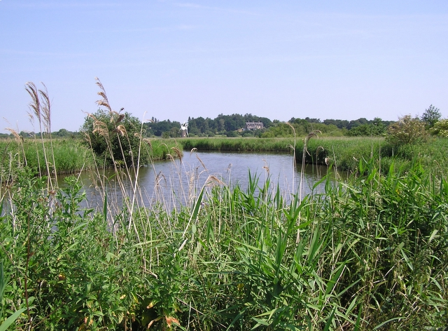 River Ant, How Hill - geograph.org.uk - 197266