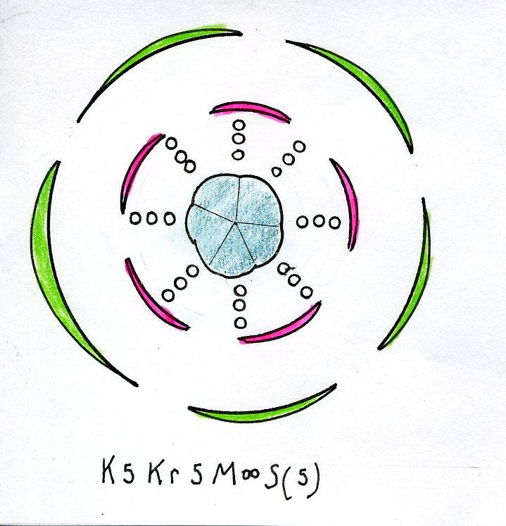 File Rosa Floral Diagram Jpg