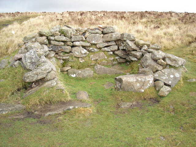 Ruin near Birch Tor - geograph.org.uk - 1027664
