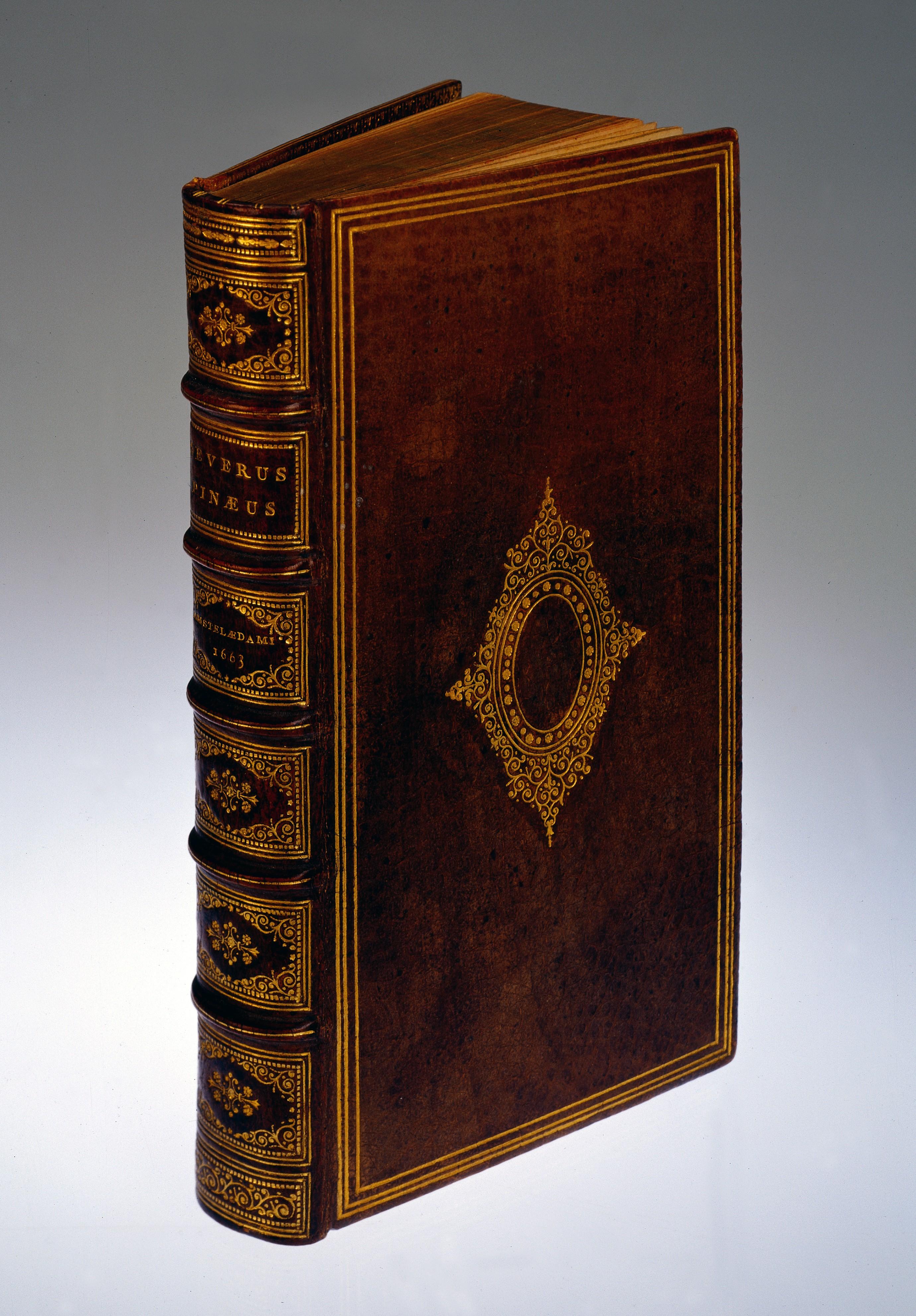 Book Covered In Human Skin : File s pinaeus de integritatis et corruptionis virginum