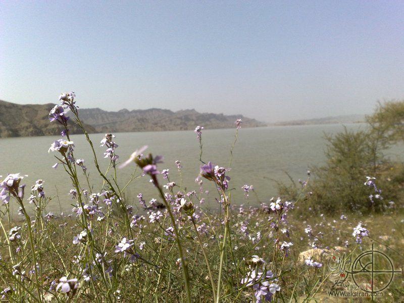 شهرستان میناب