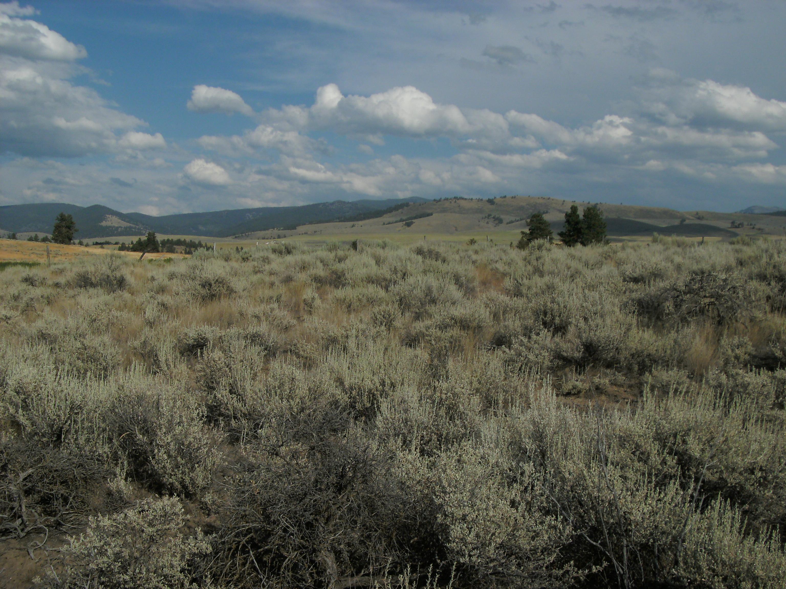 Sapphire Mountains Montana Map.Sapphire Mountains Wikipedia