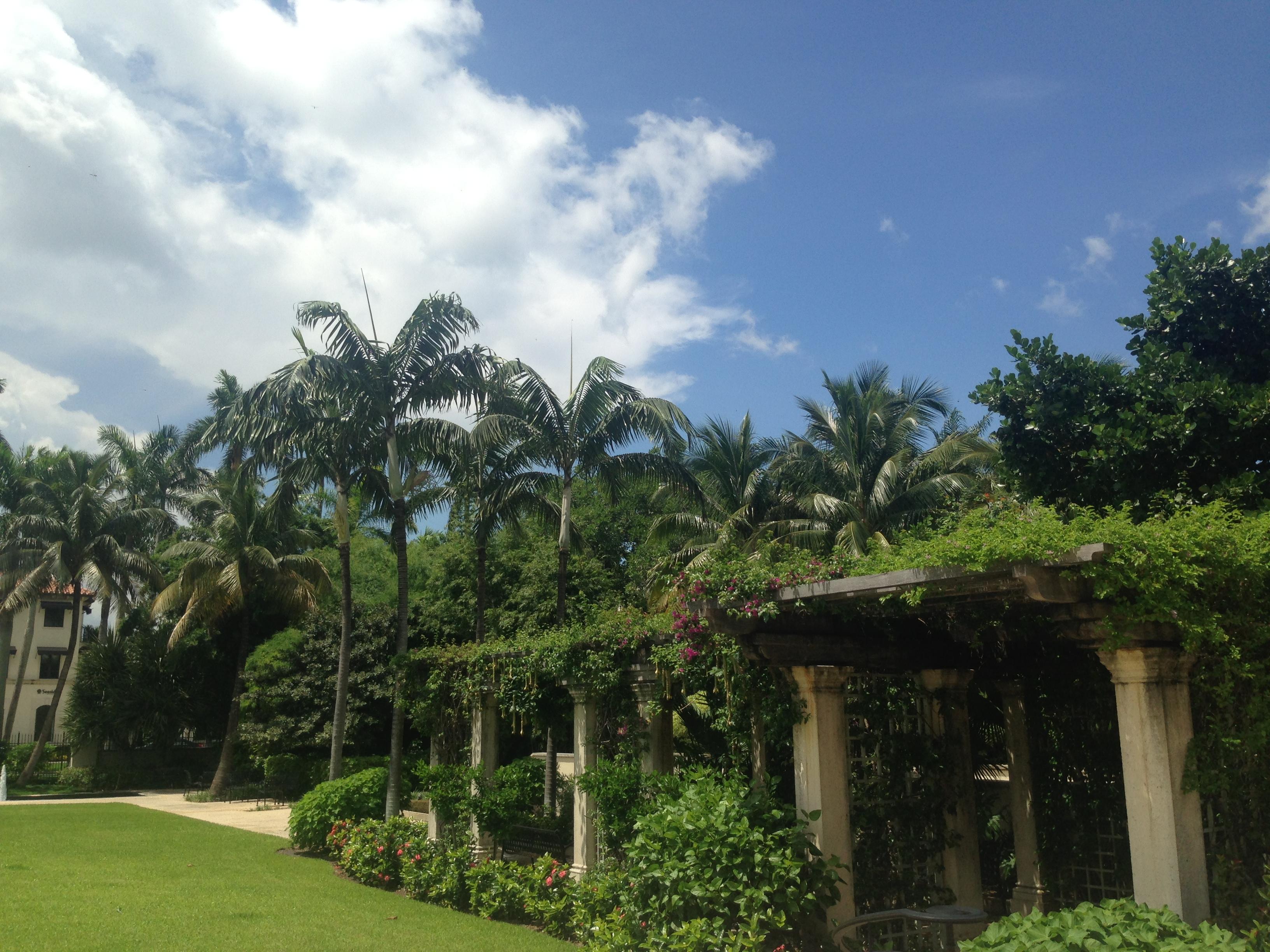 Society The Four Arts Garden Palm Beach
