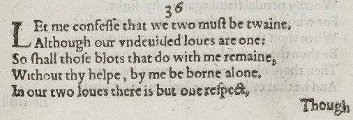 sonnet 30 theme