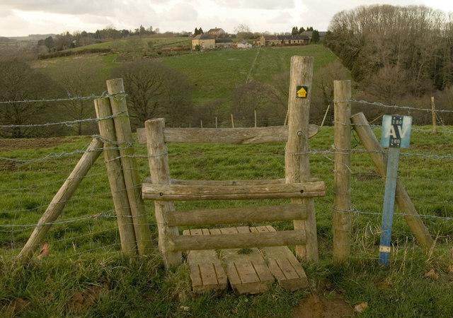 Stile, Perrott Hill. - geograph.org.uk - 680813