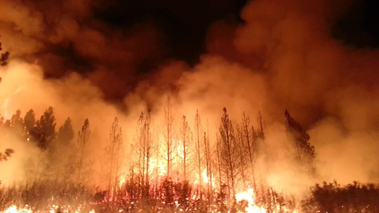 The Rim Fire burned more than 250,000 acres (1,000 km2) of forest near  Yosemite National Park, in 2013