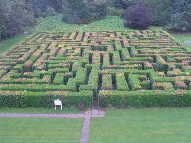 Labirinto di siepi wikipedia for Charles che arredo la reggia di versailles