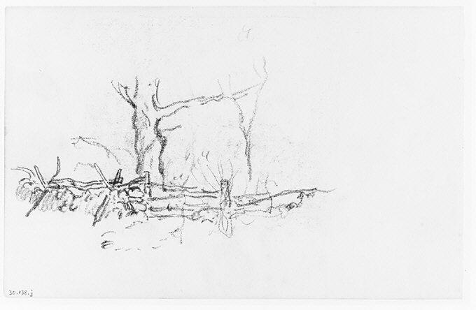 File:Trees behind a Fence (from Sketchbook) MET 263378.jpg