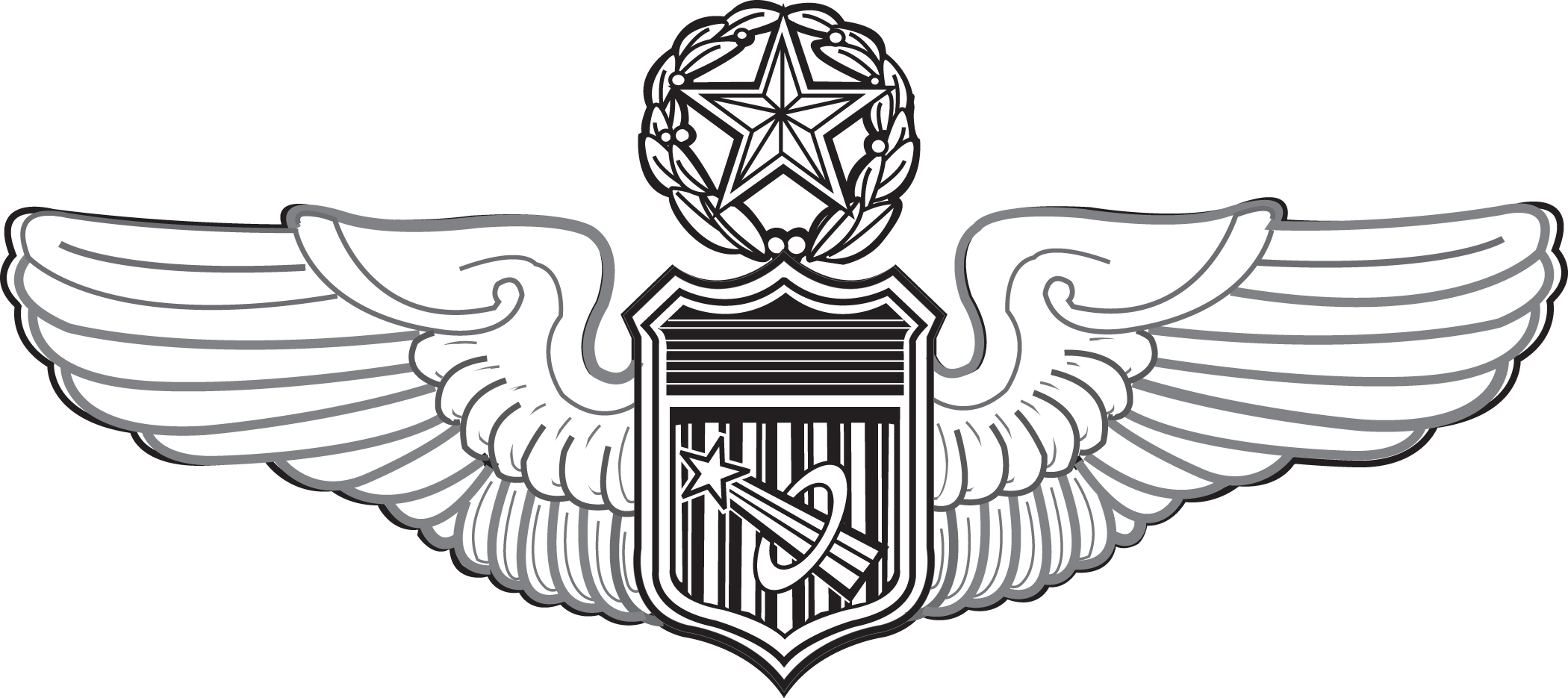 astronaut wings insignia - photo #21