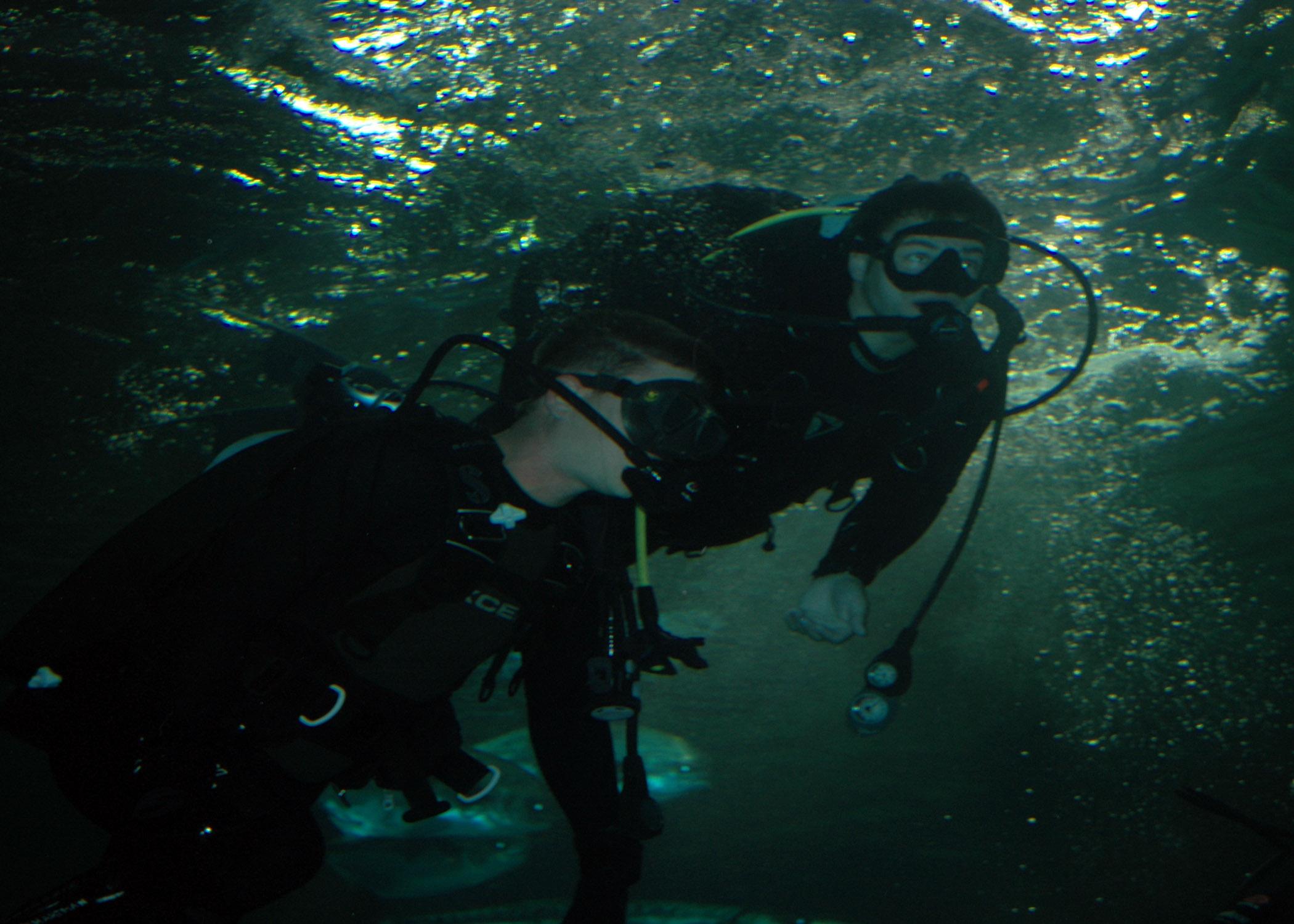 St Class Aquarium Staten Island Ny