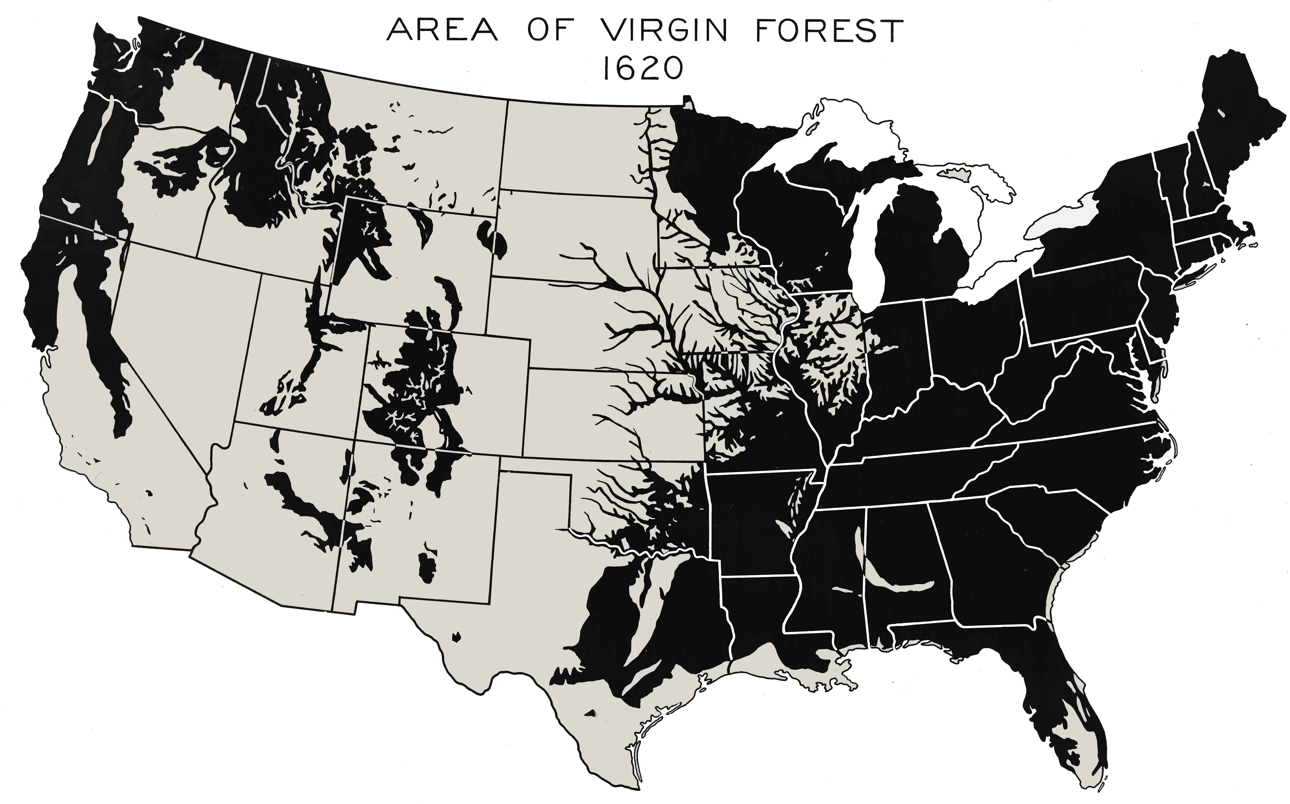 Deforestation in the United States - Wikipedia on ecological succession map, climate change, hydroelectric dams map, land pollution, transboundary pollution map, environmental issue, world map, ozone depletion, exploitation of natural resources, global warming map, land degradation, groundwater depletion map, pesticide use map, greenhouse gas, species extinction map, glacier melt map, global warming, ecological footprint map, environmental degradation, water depletion map, tree plantation map, intensive farming map, danish language map, illegal logging, mass extinction map, forest reserves map, land use map, indoor air pollution map, environmental problems map, genetically modified crops map,