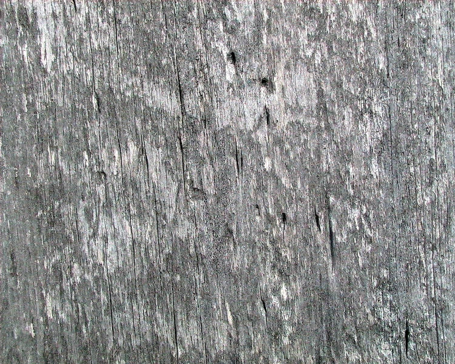 Weathered Barn Wood : Description Weathered barn wood with worm holes.jpg
