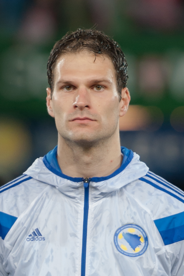 Den 31-år gammal, 196 cm lång Asmir Begovic in 2018 photo