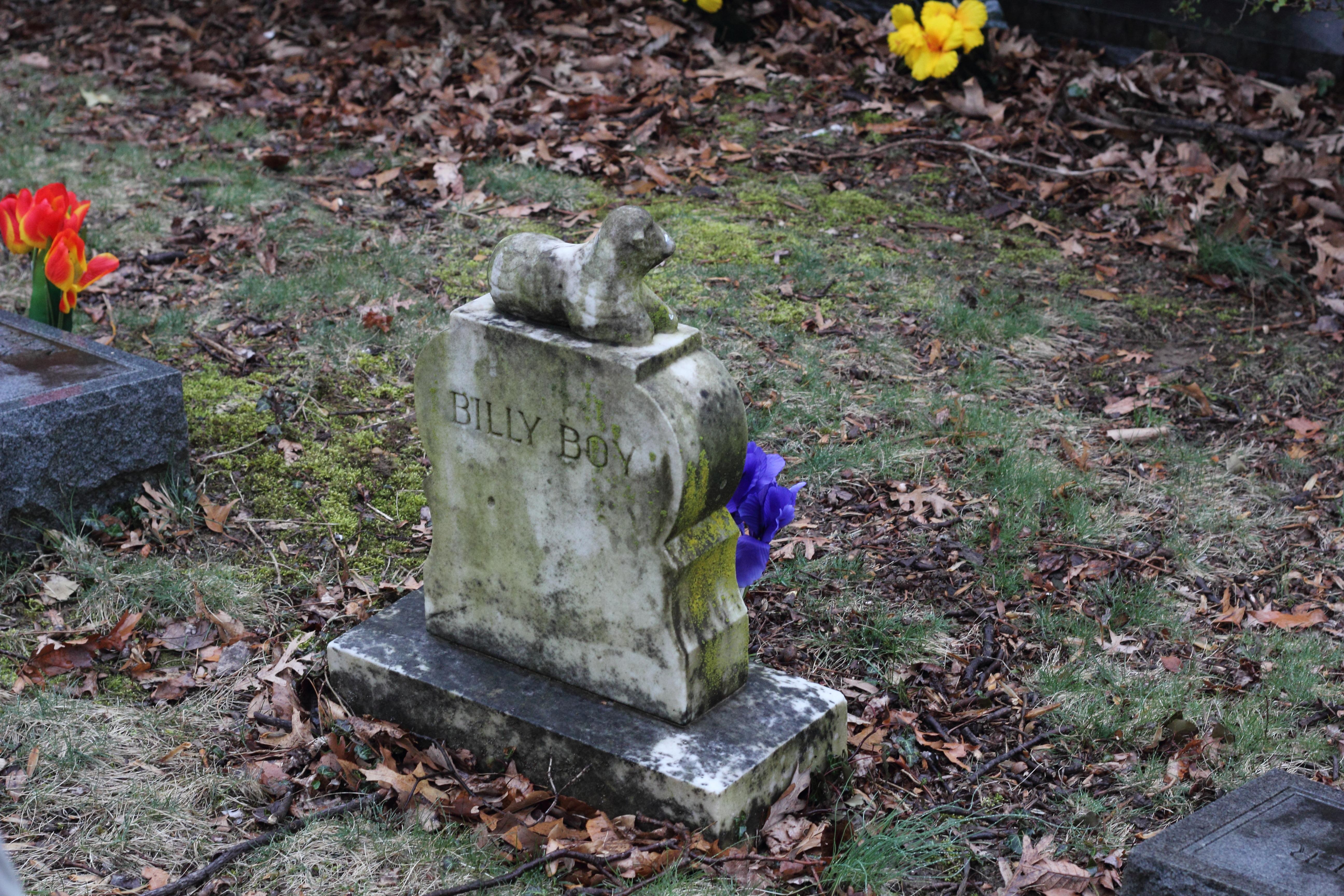 Alexandria Virginia Wikipedia >> Ivy Hill Cemetery (Maryland)
