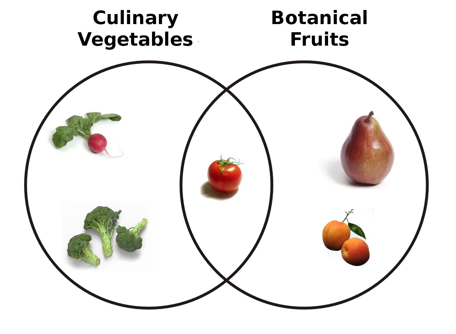 definitions fruit botanical gastronomical culinary