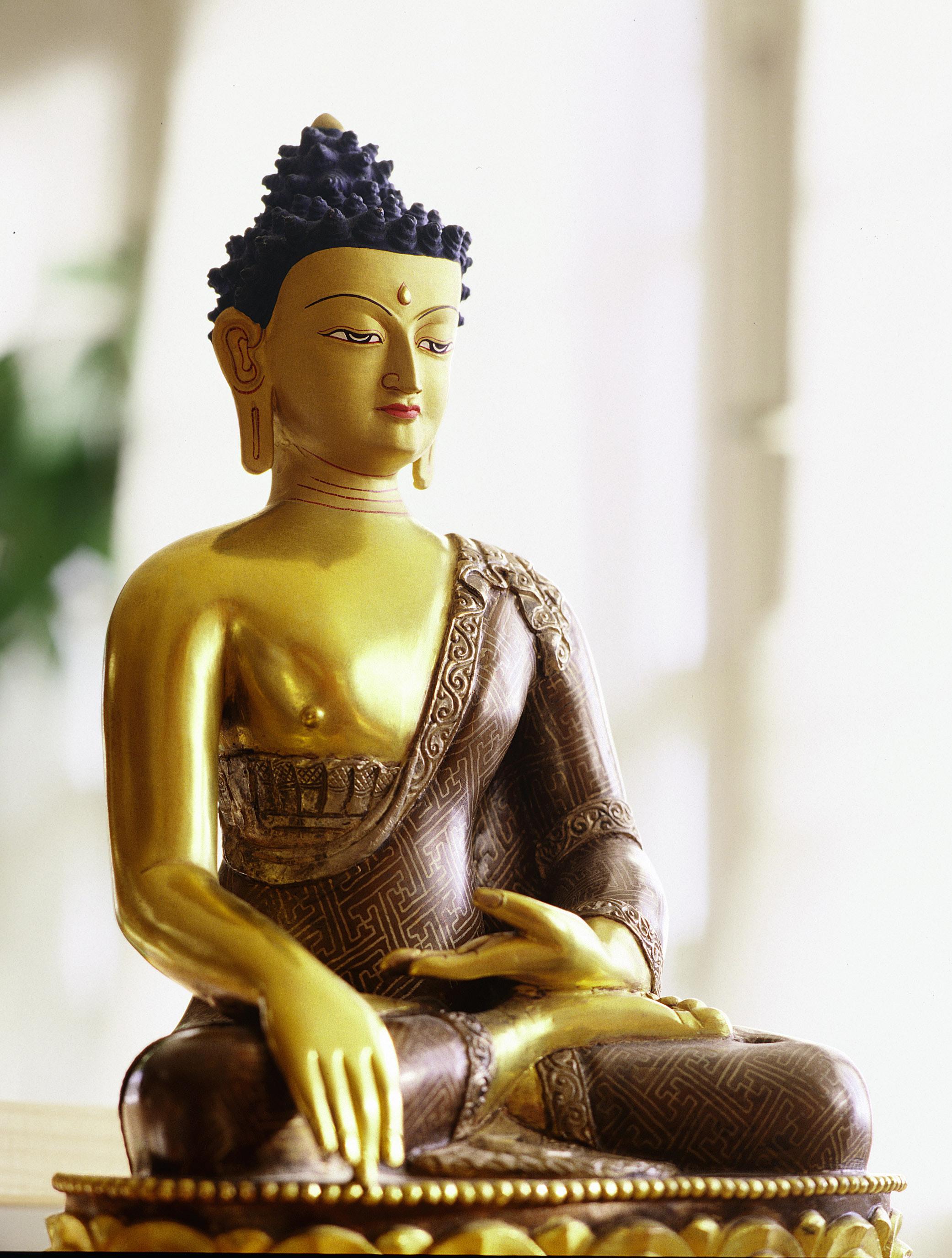 http://upload.wikimedia.org/wikipedia/commons/a/a7/BuddhaShakyamuni.jpg