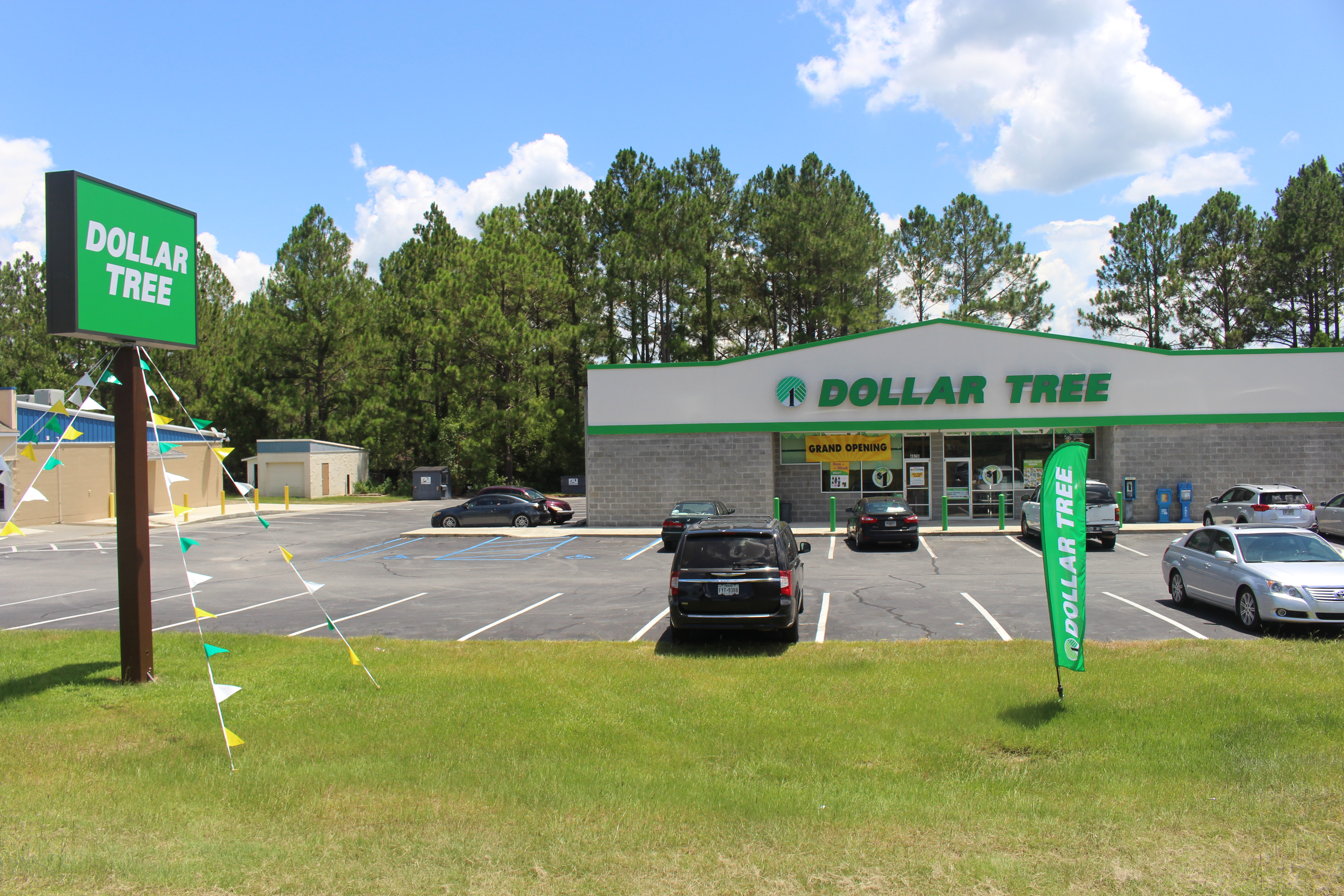 File:Dollar Tree, Bemiss Rd, Lowndes County jpg - Wikimedia