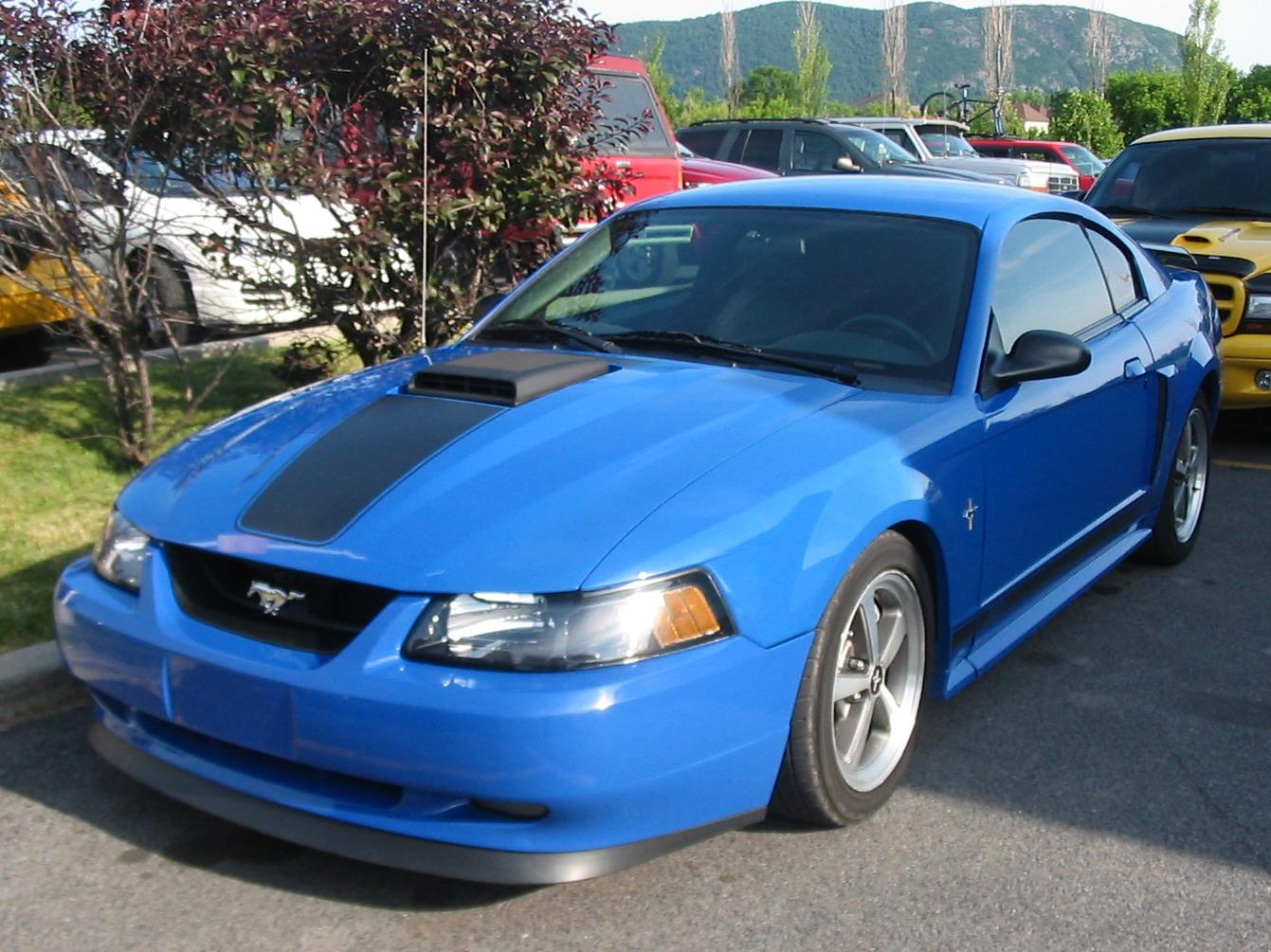File:Ford SN-95 Mustang.jpg - Wikimedia Commons