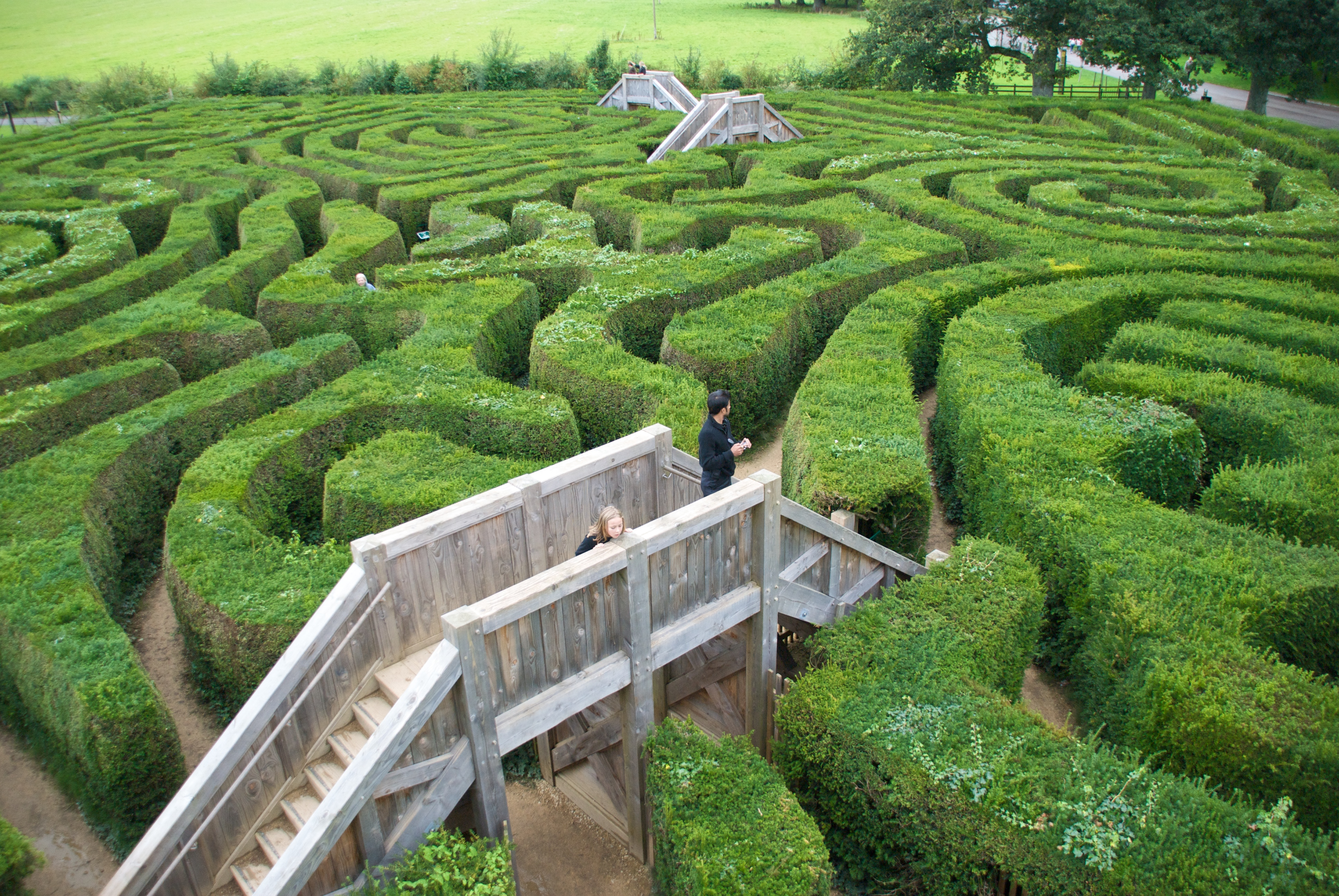 Longleat Maze Hedge House Town