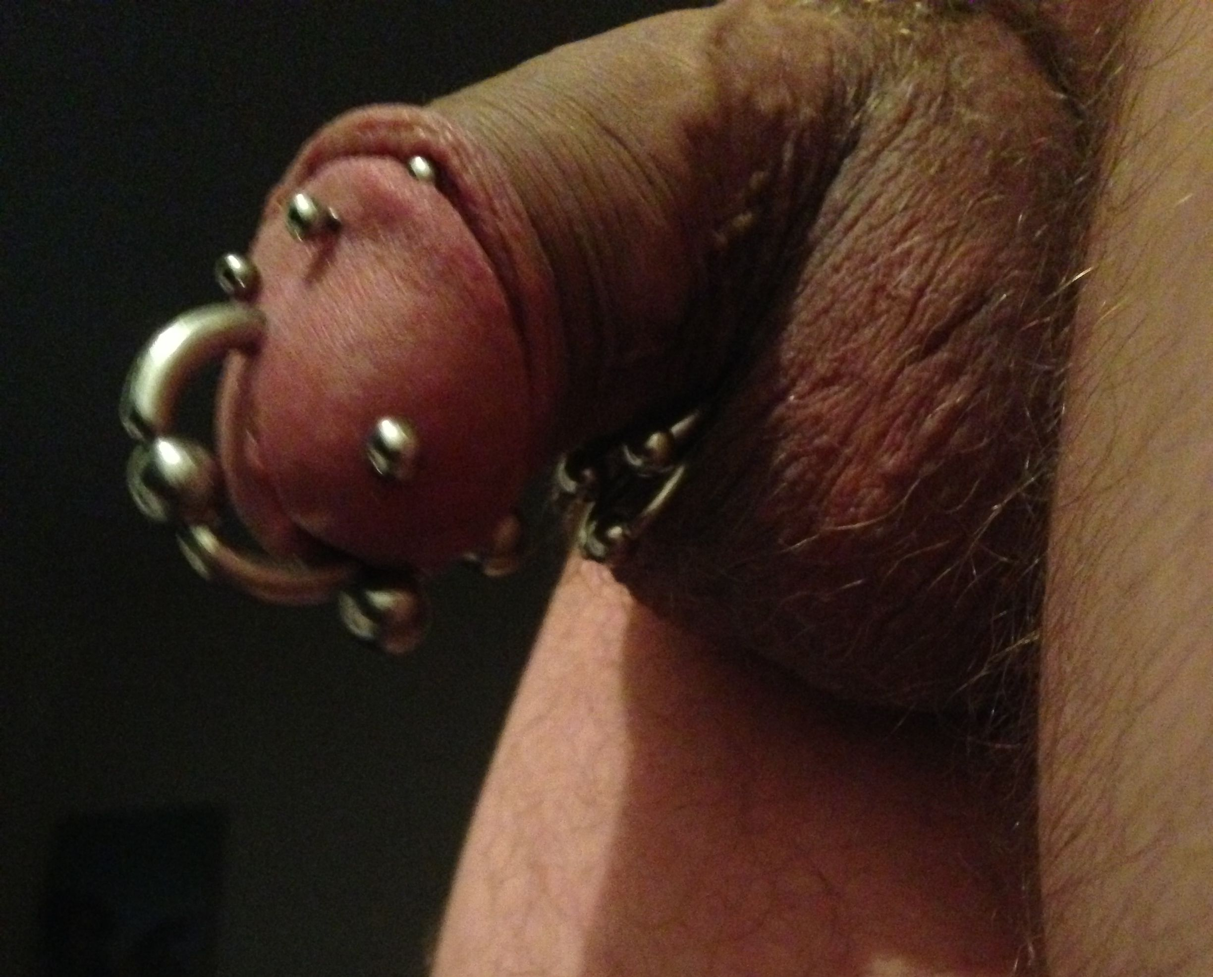 Lads cock piercing — pic 7