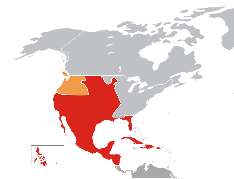 new spain Comparing settlement patterns: new spain, new france, and british north  america  pastureland was located outside these clustered settlements.