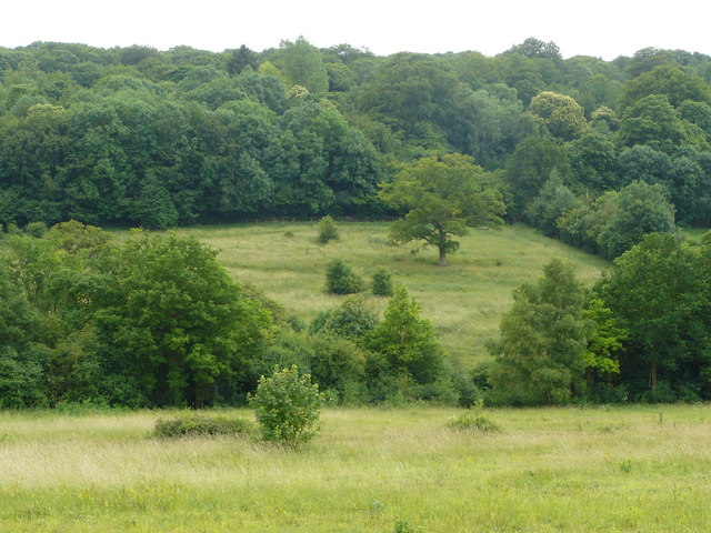 Park Downs, Chipstead - geograph.org.uk - 1386603.jpg