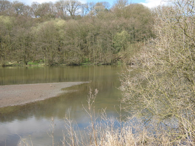 Park Pool, Deep Hayes Country Park - geograph.org.uk - 1230132