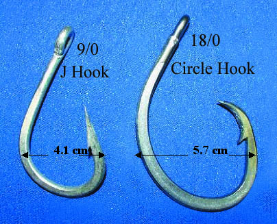 Circle hook wikipedia for Circle fishing hooks