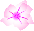 Pink AIflower.png