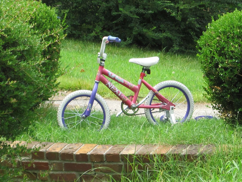 Bikes Memphis Tn childrens bike Memphis TN