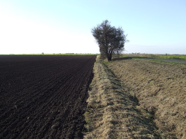 File rich soil of the fens for What is rich soil called