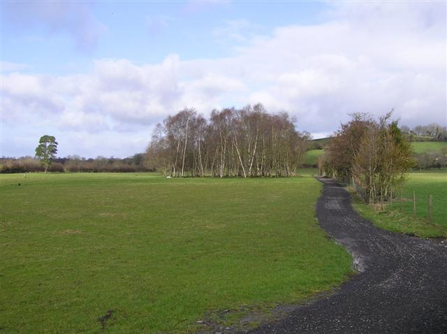 Sidaire Townland, Ballinamallard Located to the west of the hamlet.
