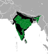 https://upload.wikimedia.org/wikipedia/commons/a/a7/Sloth_Bear_area.png