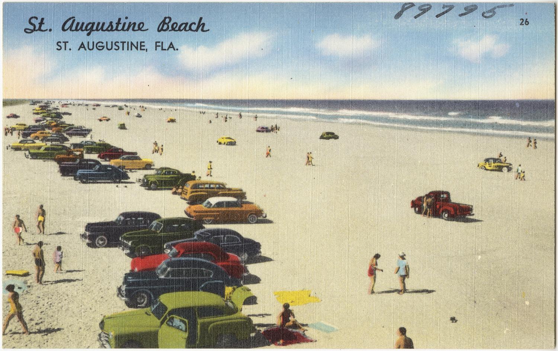 St Augustine Beach Palm Trees