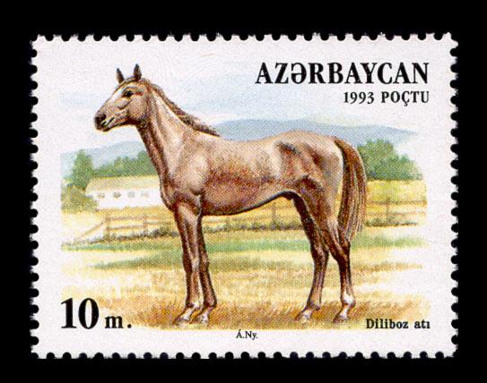 Daliboz - Horse Scanner