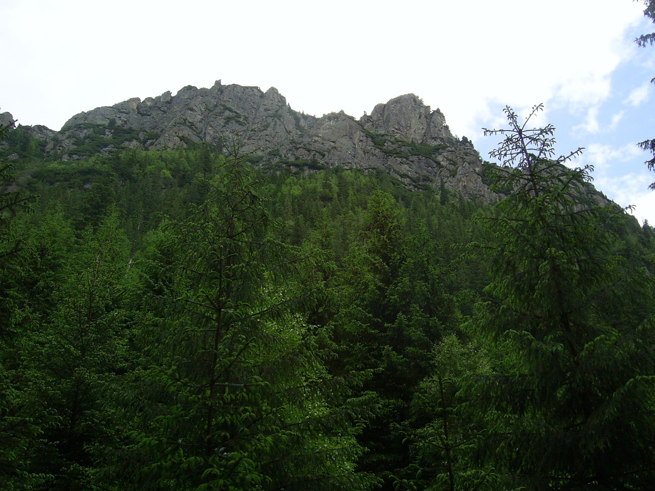 Wołoszyn widziany z Dol. Roztoki, fot. Krzysztof Dudzik, źródło: Wikimedia, GNU
