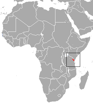 The average litter size of a Usambara shrew is 1