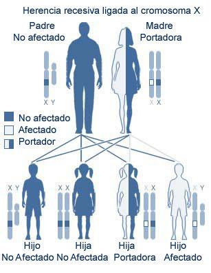 favismo sintomas de diabetes