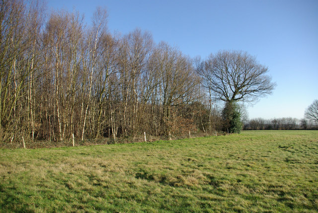 A Southern Corner of Mereworth Woods - geograph.org.uk - 327941